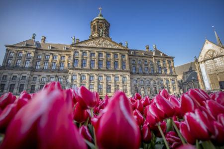 Amsterdam, Královský palác
